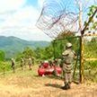 Южнокорейские сапёры начали разминирование границы с КНДР