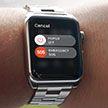 Apple Watch спасли американскую бабушку в ДТП