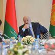 Лукашенко распорядился привлечь банки к помощи отстающим сельхозорганизациям Витебской области