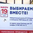 В России огласили предварительные результаты выборов в Госдуму