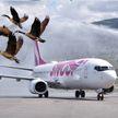 В Канаде пассажирский лайнер столкнулся с птицами и совершил экстренную посадку