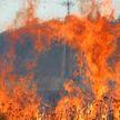 Пенсионер обгорел при наведении порядка на подворье в Лунинецком районе