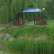 Спасти королевский пруд: жители Гродно ведут кампанию по восстановлению одного из старинных водоёмов города