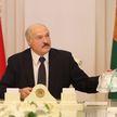 Александр Лукашенко провел совещание по эпидемиологической ситуации в Беларуси