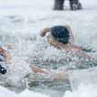 Соревнования по зимнему плаванию стартовали в Минске