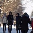 Температура воздуха в Беларуси была на 12°С градусов ниже нормы. Каковы последствия?