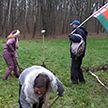 Воскресный автопробег «За Беларусь» завершился субботником в Севастопольском парке