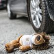 Пьяный водитель сбил 6-летнего мальчика в Червенском районе