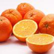 «Солнечный фрукт»: полезные свойства апельсина