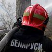 Более 20 пожаров произошло в лесах за сутки