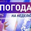Когда в Беларусь вернется жара? Погода на неделю с 5 по 11 июля. Подробный прогноз