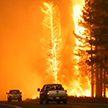 Огненный торнадо, отрезанный от мира город Сьюзанвилль: в Калифорнии бушуют пожары