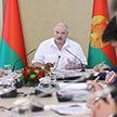 «Не будет порядка – у нас нет перспектив»: итоги рабочей поездки Лукашенко в Гродненскую область