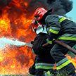 Весенние палы: более 40-ка пожаров за сутки потушили в Беларуси, есть жертвы