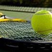 Ежегодные персональные награды вручила Ассоциация теннисистов-профессионалов