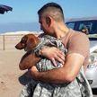 Клетка с таксой выпала из самолёта и собака шесть дней выживала в пустыне
