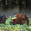 На Полесье рекордный урожай капусты. Фермер бесплатно раздаёт овощи всем желающим