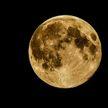 Ученый объяснил, почему люди не смогут жить на Луне и Марсе