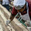 В Индии испекли торт длиной в шесть километров