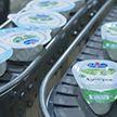 Растет экспорт белорусской молочной продукции