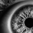 Учеными создан искусственный глаз, который видит в темноте