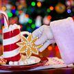 В Беловежскую пущу на работу ищут Деда Мороза