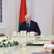 Что будет с политическими партиями в Беларуси? Итоги совещания у Президента