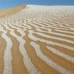 ФОТОФАКТ: снег выпал в пустыне на территории Алжира и Марокко