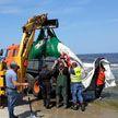 На балтийском побережье Польши обнаружили мёртвого кита