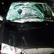 Пешехода насмерть сбил автомобиль в Дятловском районе