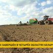 Сев озимых культур закончили в четырех областях Беларуси