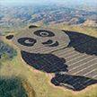 Солнечная электростанция в форме панды заработала в китайской провинции Шаньси