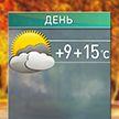 Прогноз погоды на 1 ноября: днём до +15°С