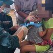 Ребенок надел на голову пластиковое сиденье унитаза в Гомельском районе. Снять самостоятельно уже не получилось
