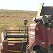 Александр Лукашенко проверил, как идёт уборка зерновых в Минском районе