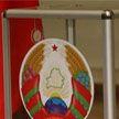 ВЫБОРЫ-2020. Более 87% населения Беларуси планирует принять участие в президентских выборах – соцопрос