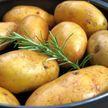 Какая картошка опасна для здоровья