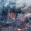 Пожары в Сибири могут привести к экологической катастрофе
