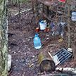 Минчанин два года жил в лесу, скрываясь от милиции