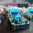 Выставка «Белагро-2021» и «ТИБО-2021»: рекордное количество участников и 200 новинок от белорусских производителей