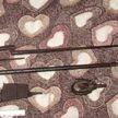В Мозыре милиция обнаружила странную «картину» из частей оружия и гранаты. Взгляните сами (ФОТО)