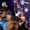 Интерактивная выставка открылась в детском лагере «Зубрёнок»