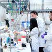 Ученые из пяти стран выяснили, как долго сохраняются антитела у переболевших ковидом