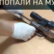 Прощай, оружие с глушителем. В Пружанском районе милиция изъяла пистолет кустарного производства
