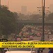 «Газовая камера»: в Дели объявлено чрезвычайное положение из-за смога