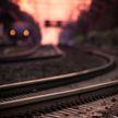 Еще один несчастный случай на ЖД: мужчину насмерть сбил поезд под Борисовом