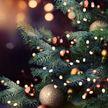 Огни на рождественской елке зажглись в Вифлееме