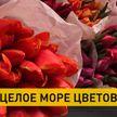 В Минске к 8 Марта открылся специальный цветочный базар на Комаровке