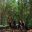 В Кличевских лесах поисковики пытаются поднять из болота фрагменты советского бомбардировщика