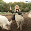 Свинья покусала ведущую во время съемки